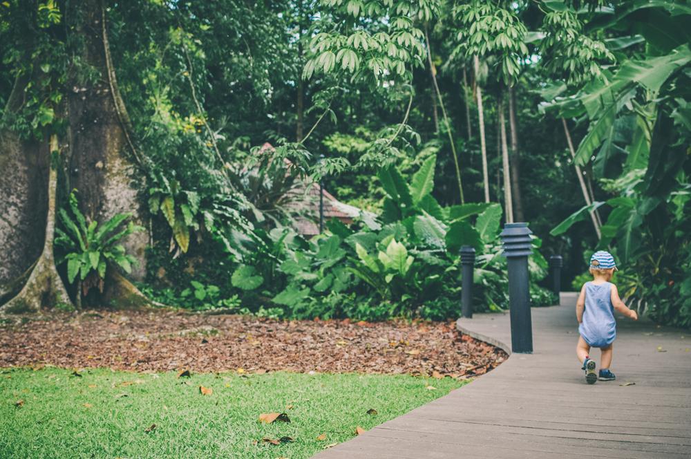 Singapur 6c