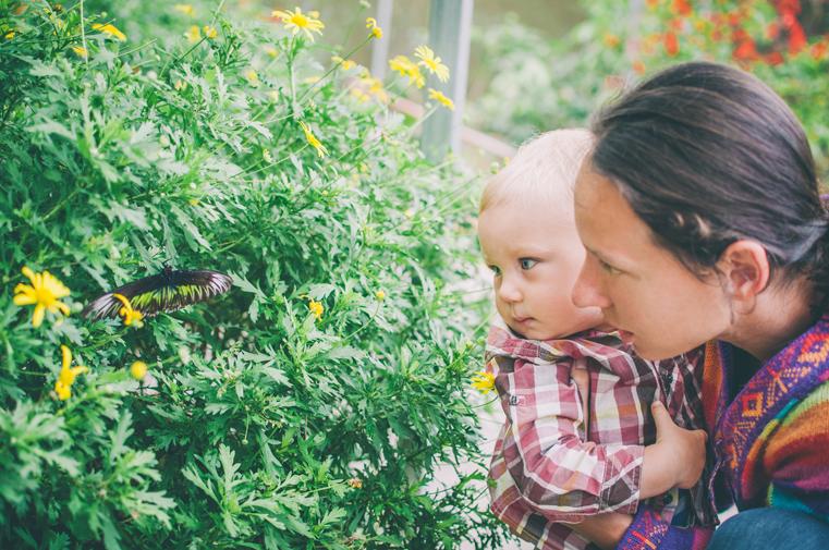 04b.Malezja-motylarnia-z dzieckiem