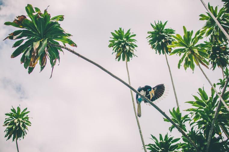 6-Malezja-wyspa Pangkor-z dzieckiem