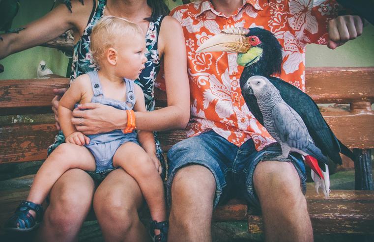 10.Kuala Lumpur Bird Park-Malezja-z dzieckiem