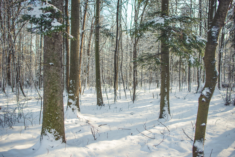 02.Zima w górach