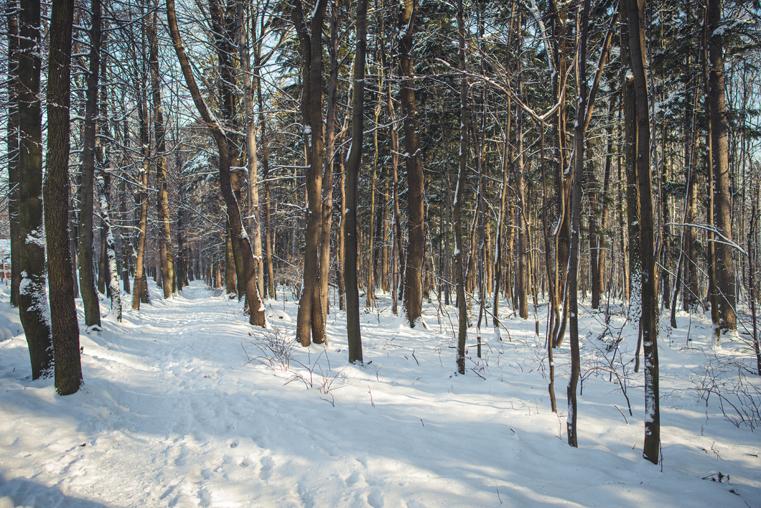 07.Zima w górach