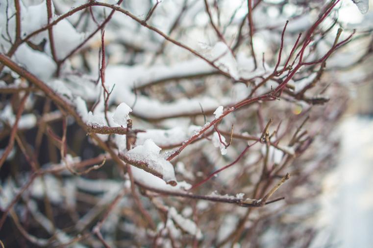 09.Zima w górach