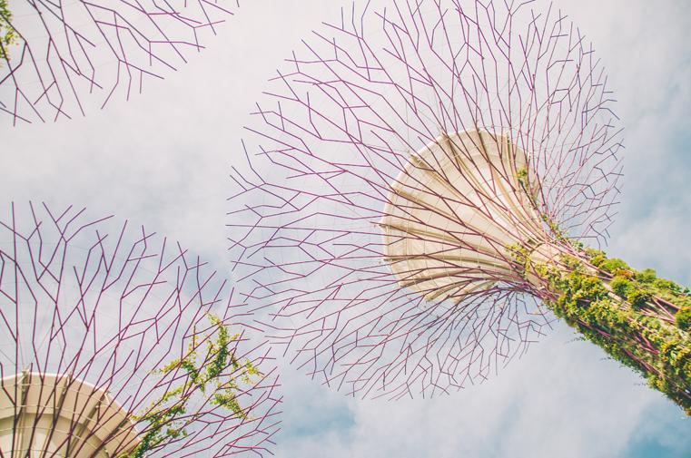 15.Singapur-podróż z dzieckiem