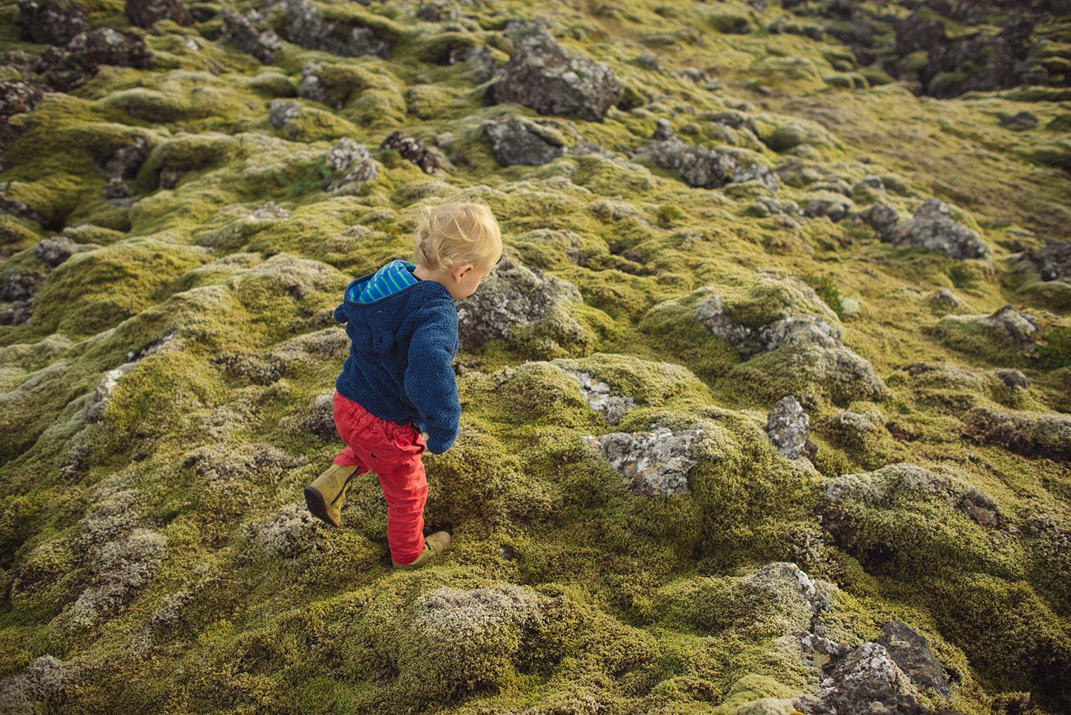 03.Pola lawy - Polwysep Snaefellsnes -Islandia - podroz z dzieckiem