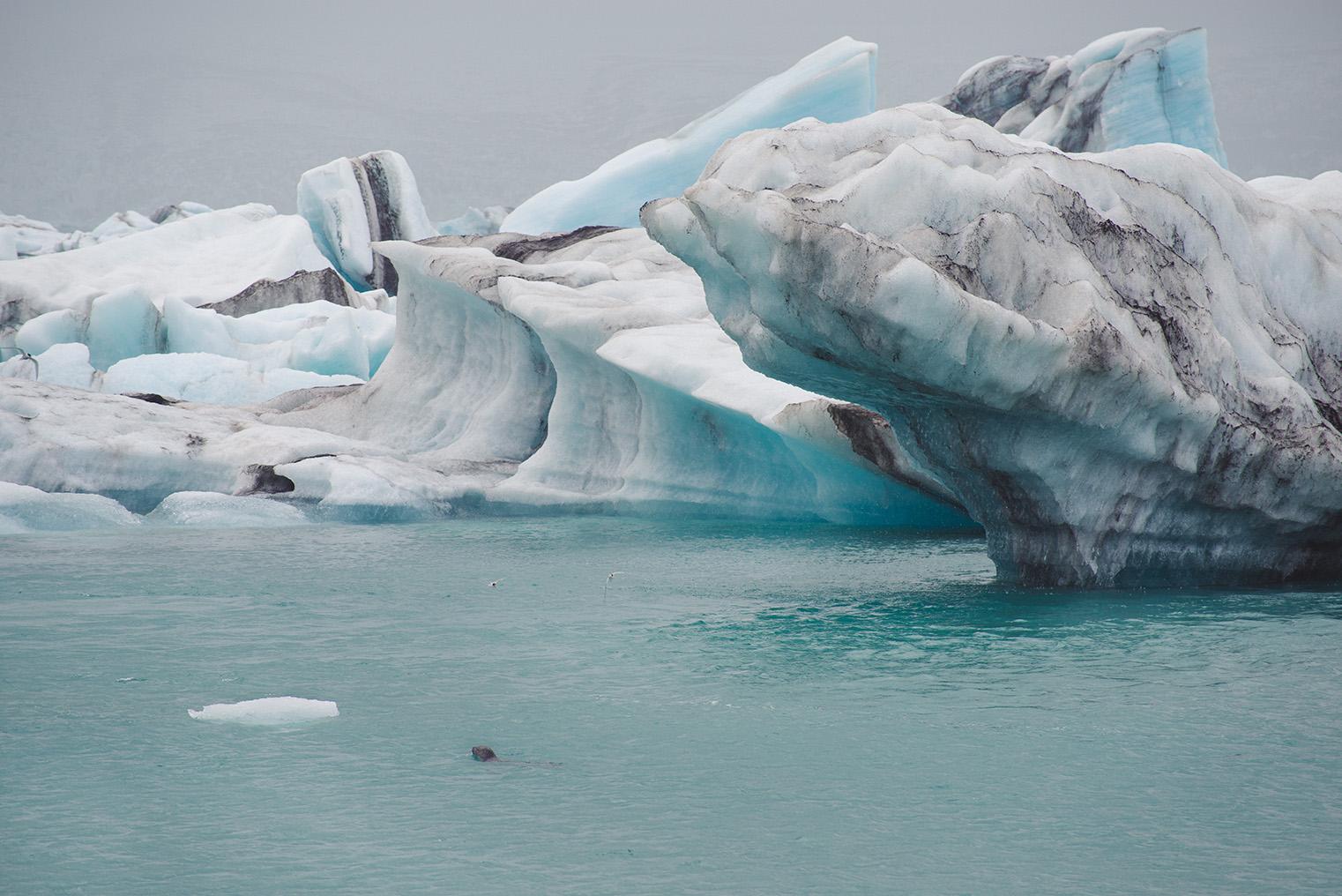 Laguna lodowcowa - Jokulsarlon -Islandia - podroz z dzieckiem