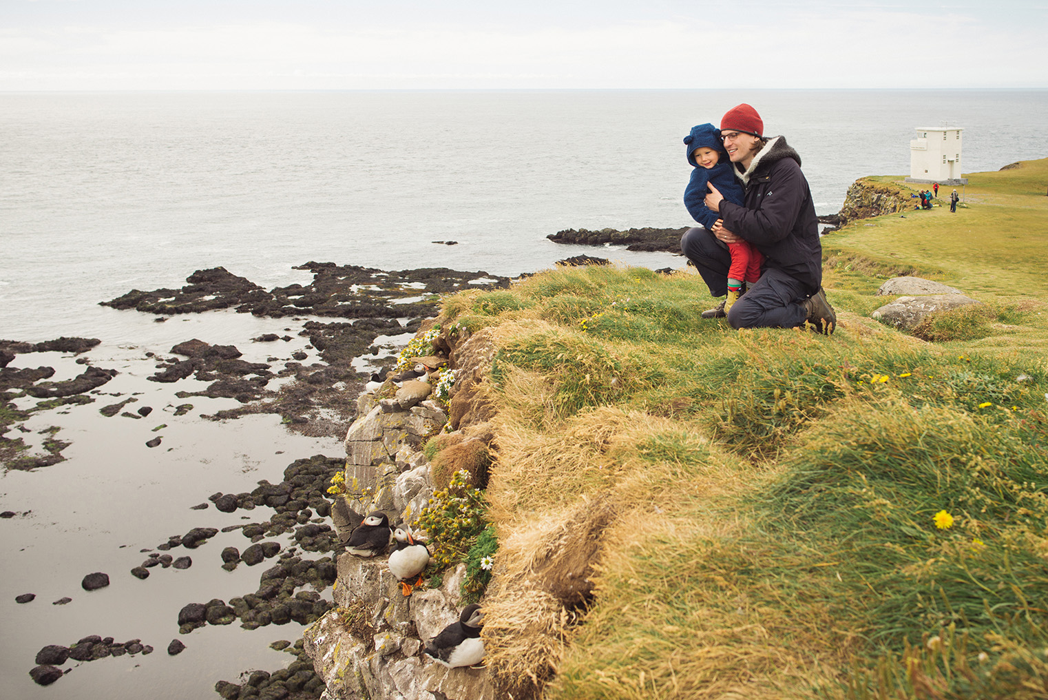 04a.Maskonury Islandia - Latrabjarg - fiordy zachodnie - podroz z dzieckiem