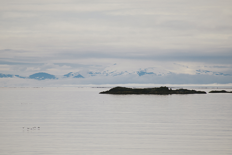 10.Baldur - prom na Fiordy Zachodnie - Islandia - podroz z dzieckiem