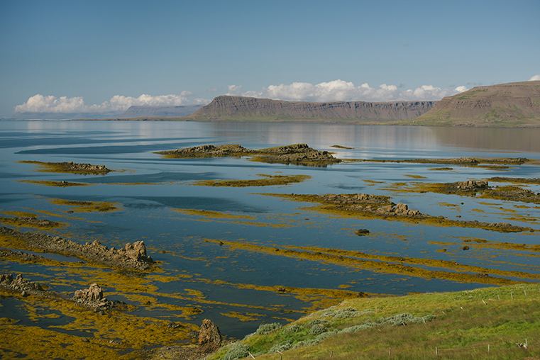 16.Fiordy Zachodnie - Islandia - podroz z dzieckiem