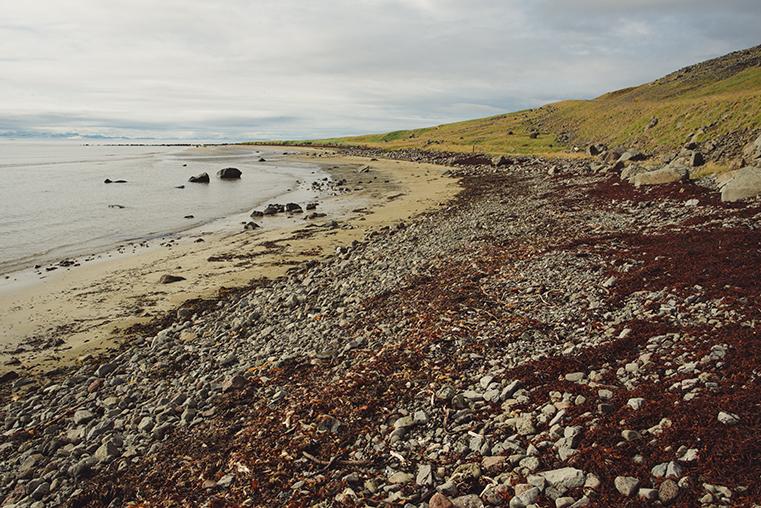 25.Fiordy Zachodnie - Islandia - podroz z dzieckiem