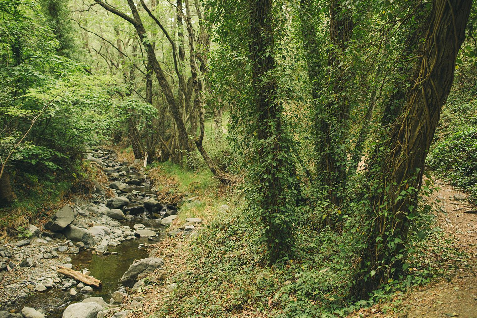 06a.Gory Troodos - Omodos -Wodospad Millomeris - Cypr z dzieckiem