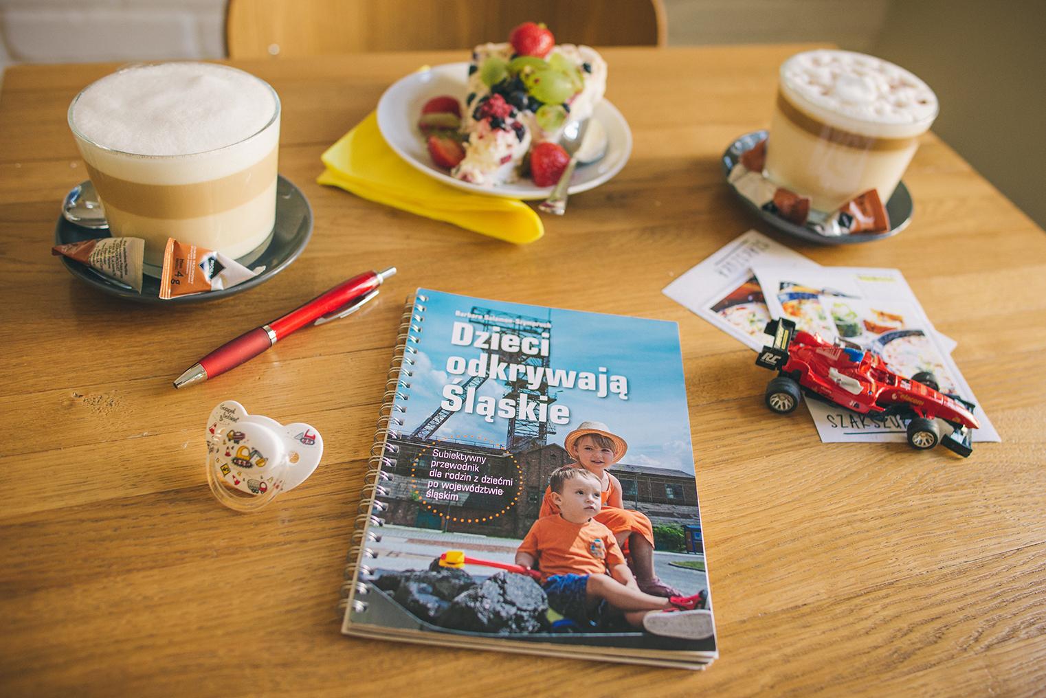 Dzieci odkrywają Śląskie – recenzja