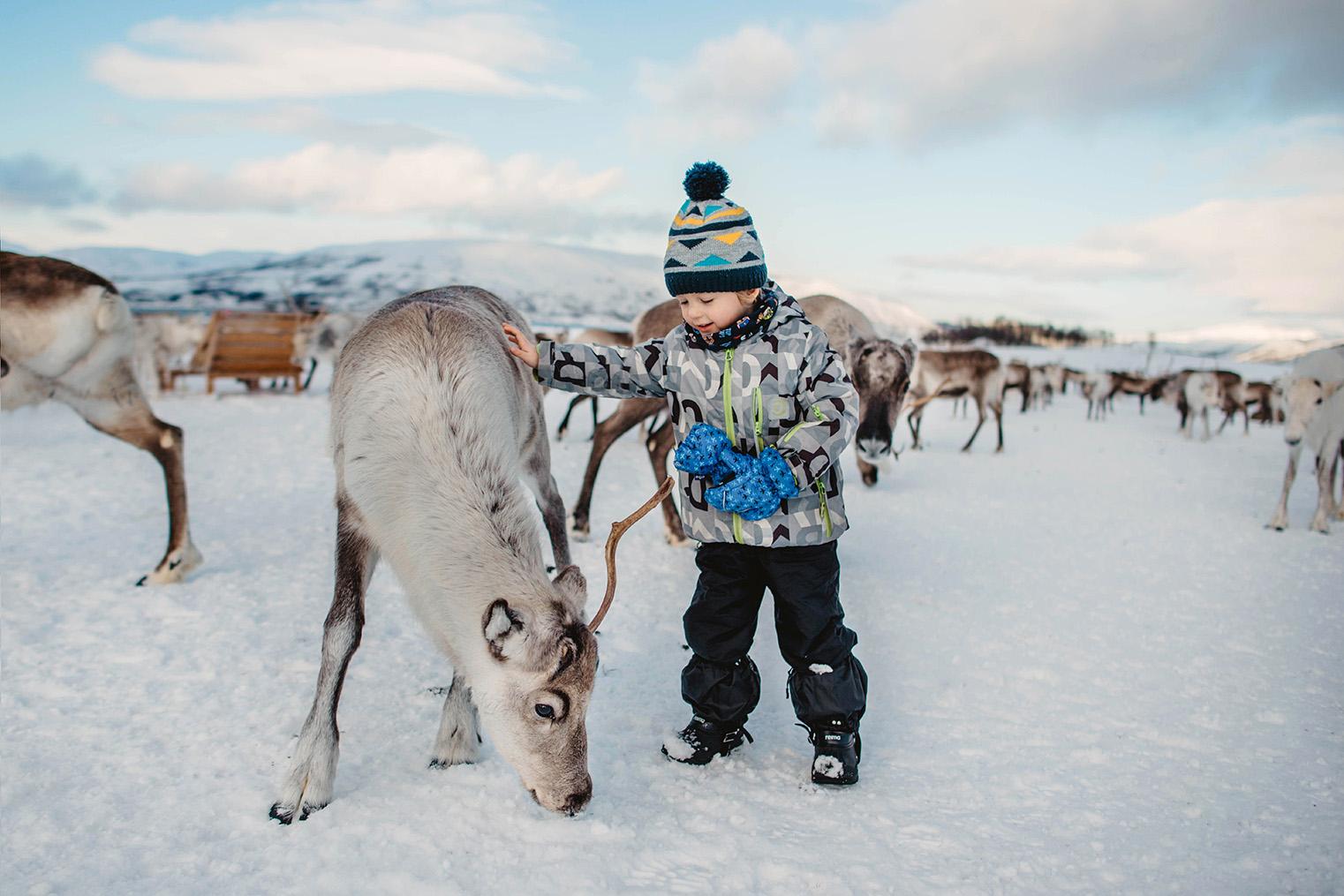 W poszukiwaniu zimy
